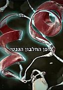 צופן החלבון הגנטי
